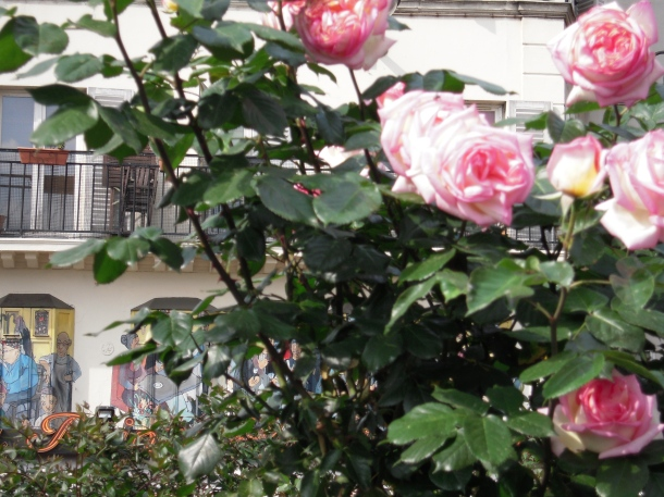 rose-_smokethorn_Paris