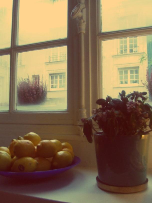 Institut suedois fenêtre